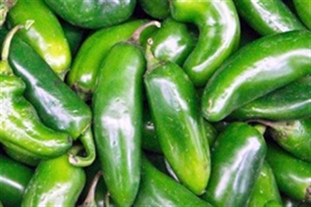 how to make jalapenos in vinegar